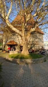 Spring light - a five-angular Renaissance tower