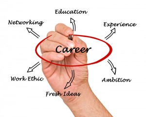 career_web